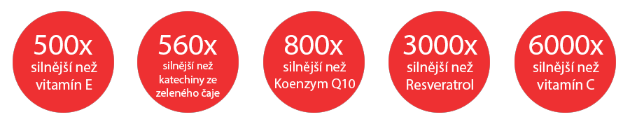 https://czechvirus.cz/produkty/img/srovnani_2.png