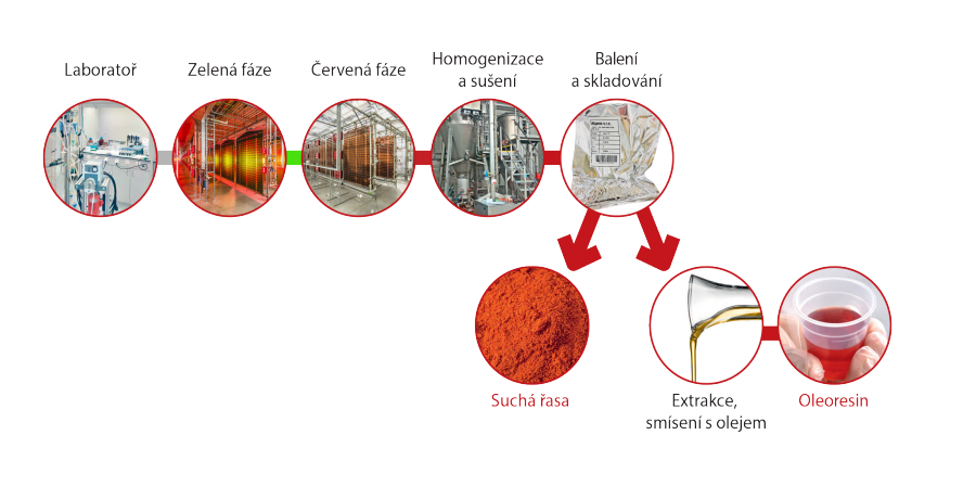 https://czechvirus.cz/produkty/img/vyroba.png
